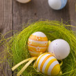 Easter eggs — Foto de stock #4929613
