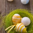 Easter eggs — Stockfoto #4929613