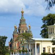 Russia, Peterhof and the Church of St. Peter and Paul Church — Stock Photo #3966445