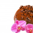 Stock Photo: Chocolate cake and orchid flower