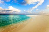Maldive. una spiaggia di sabbia e una costa oceano. — Foto Stock