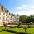Castle of a valley of the river Loire. France. Chateau de Chenonceau — Stok fotoğraf