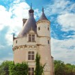 Castle of a valley of the river Loire. France. Chateau de Chenonceau - Stock Photo