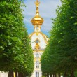 Stock Photo: Russia, Petrodvorets- Peterhof Palace