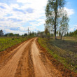 Stock Photo: Rural dirt road, summer.