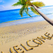 On a beach it is written Welcome and a palm tree over ocean — Stock Photo
