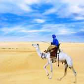 Bedouin on camel going through desert Sahara — Stock Photo