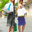 Shopping woman — Stock Photo #4069640