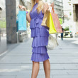 Shopping woman — Stock Photo #4069696