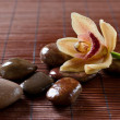 Flower orchid and zen stones — Stock Photo