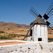 Typical Spanish Windmill — Stock Photo