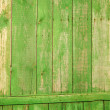 Green fence — Foto Stock
