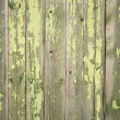 Green fence — Stock Photo #4155365