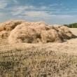 Haystack — Stock Photo #3993200