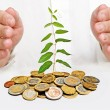 Palms protecting plant growng from pile of coins — Stock Photo #4764779