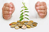 Palms protecting a plant growng from pile of coins — Stock Photo