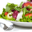 Salad with vegetables — Stock Photo #4007881