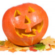 Halloween pumpkin with autumn leaves — Stock Photo