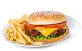 Hamburger with vegetables and fries — Stock Photo