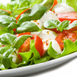 Caprese salad — Stock Photo #4873478