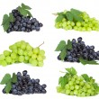 Stock Photo: Set with grape