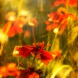 Stock Photo: Vertical old flower picture