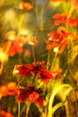 Vertical old flower picture — Stock Photo