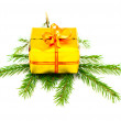 Present on fir branch — Stock Photo
