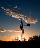 Moinho de vento ao pôr do sol no karoo — Foto Stock