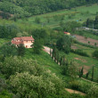 Stock Photo: Villin Tuscany amongst olive groves