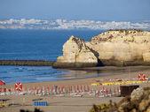 Strand van praia de rocha in portimao, algarve, portugal — Stockfoto