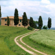 The landscape of the Val d'Orcia. Tuscany. Italiy — Stock Photo #3954831