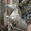 Architectural details of Duomo facade - Siena, - Photo