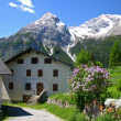 Stock Photo: Spring village in the Swiss Alps