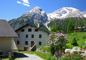 Spring village in the Swiss Alps — Stock Photo
