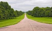 The Long Walk at Windsor, United Kingdom. — Stock Photo