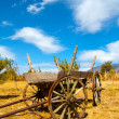 Old Wooden Cart in the Field — Stock Photo