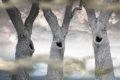 Funny Spooky Trees — Stock Photo