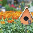 Bird House in Marigolds — Stock Photo