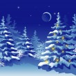 Winter Christmas forest at night - Stock Vector