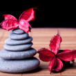 Potpourri arranged zen style — Stock Photo