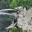 Water spout dragon — Stock Photo