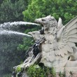 Stock Photo: Water spout dragon
