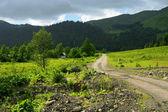 Köy yolunda — Stok fotoğraf
