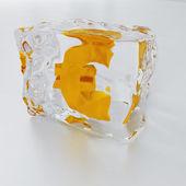 Ice with symbol of euro — Stock Photo