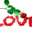 Rose and word love — Stock Photo