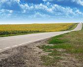 公路和字段 — 图库照片
