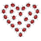 Ladybird heart — Stock Vector