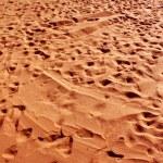 Foot marks — Stock Photo #3931818