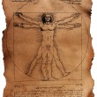 Vitruvian Man by Leonardo Da Vinci — Stock Photo